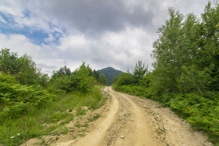 Dirt road amidst green landscape against sky