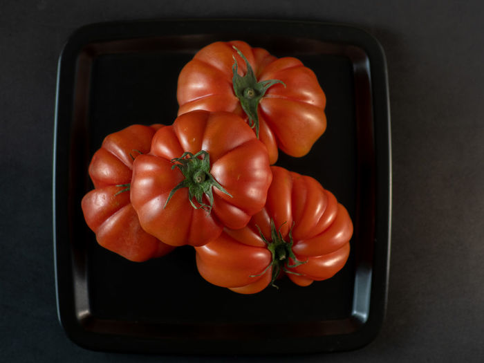 High angle view of tomatoes in container