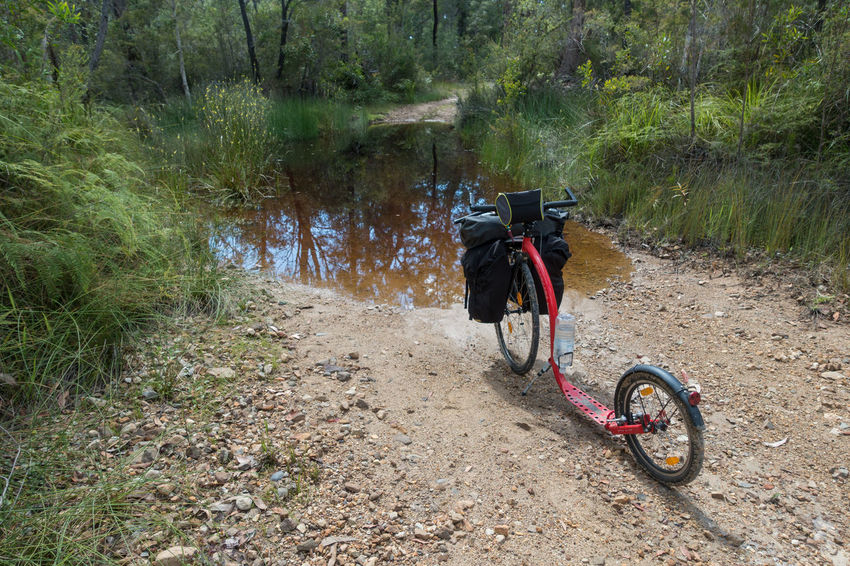 Kickbike (bicycle) on dirt road in forest with water covering the track Adventure Bicycle Bicycles Cycling Day Escapism Getting Away From It All Kickbike Land Vehicle Mode Of Transport Outdoors Parked Recreational Pursuit Riding The Way Forward Transportation