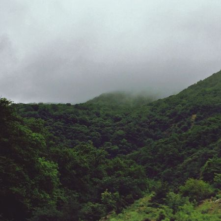 Iran Mazandaran Nature Landscape Green Spring Rainy Rainy Days Hills Jungle Trees Clouds Cloudy Cloudy Day The Great Outdoors - 2017 EyeEm Awards Been There.
