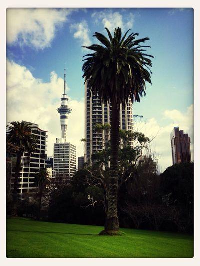 Hello Auckland! Auckland [a:18300]