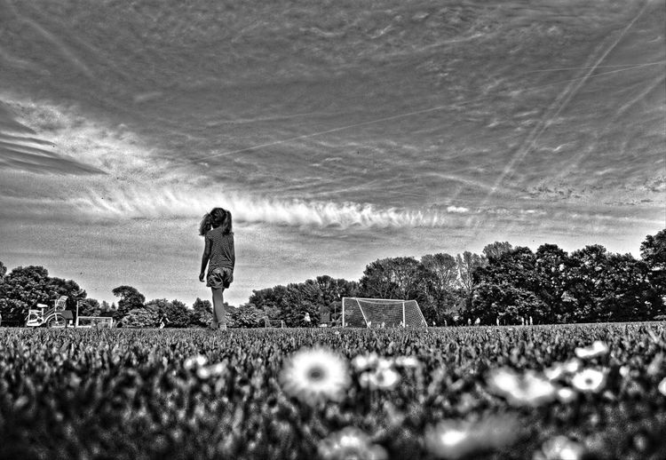 girl in the daisies meadow Agriculture Black & White Black And White Blackandwhite Daisies Daisies Between Grass Daisies Flowers Daisy Daisy Flower Day Girl Girl Walking On Path. Girl Walking On The Meadow Growth Margaritas Men Nature One Person Only Men Outdoors People Sky Wild Flowers Wild Flowers And Grasses Wild Flowers Bloom