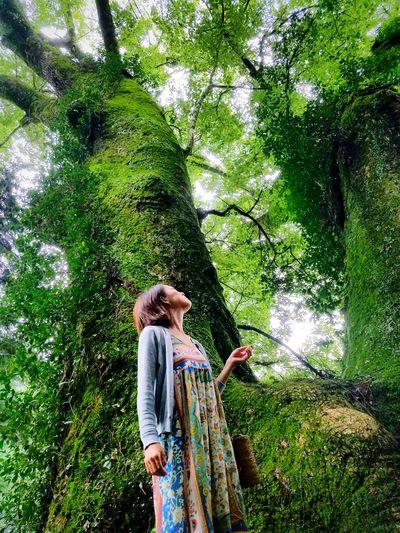 F3 Filter Shizuoka-ken Shizuoka-shi Phoneography Cellphone Photography Outdoors Old Tree🌳 1000 year-old tree