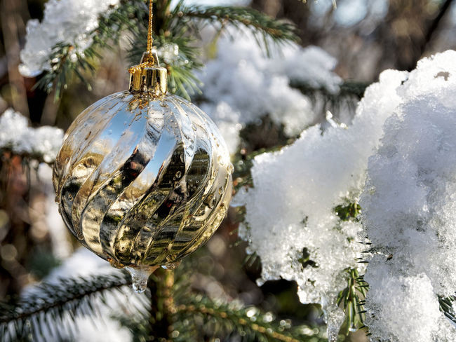 Christmas in the Woods Bauble Celebration Christmas Christmas Decoration Christmas Ornament Christmas Tree Close-up Cold Temperature Crystal Day Decoration Focus On Foreground Hanging Nature No People Outdoors Shiny Snow Tradition Tree Vacations Winter