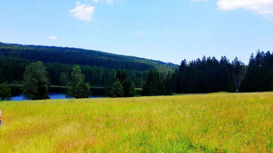 Lake Beutiful Day Beutyfullplace Nature