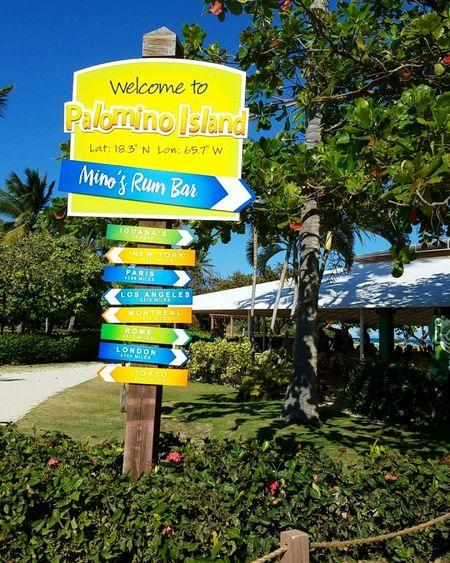Friend's birthday celebration Beach Puerto Rico Discover Your City