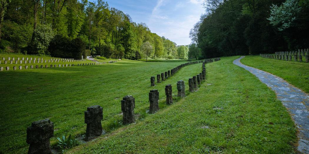 where birds sing #3 Cloud Footpath Grass Idyllic Landscape No People Outdoors Tree War Cemetery