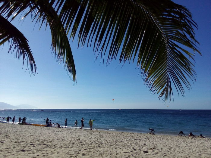 Puerto Galera, Philippines Philippines Beautiful Nature Beach Sea Water Blue Sky Sand Palm Tree Tree Outdoors No Filter Beauty In Nature Day Under The Tree Beachin While Braiding Braiding Camera Phone Asus Zenfone Photography 12MP