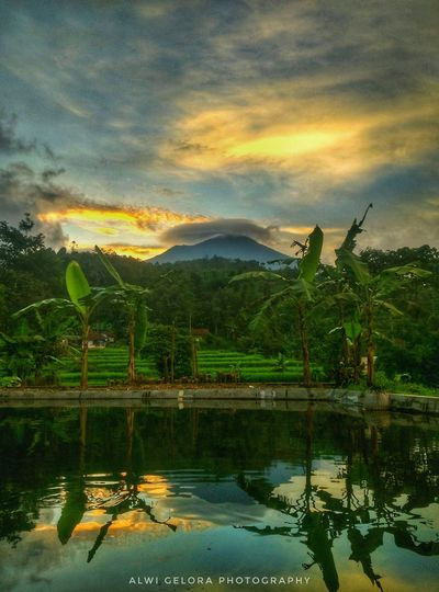 sore hari yang indah Darksunset Sunset_collection Lanscape Photography Lanscape INDONESIA Garutwestjava GarutEndah Water Mountain Beauty Tree Sunset Reflection Sky Rice Paddy