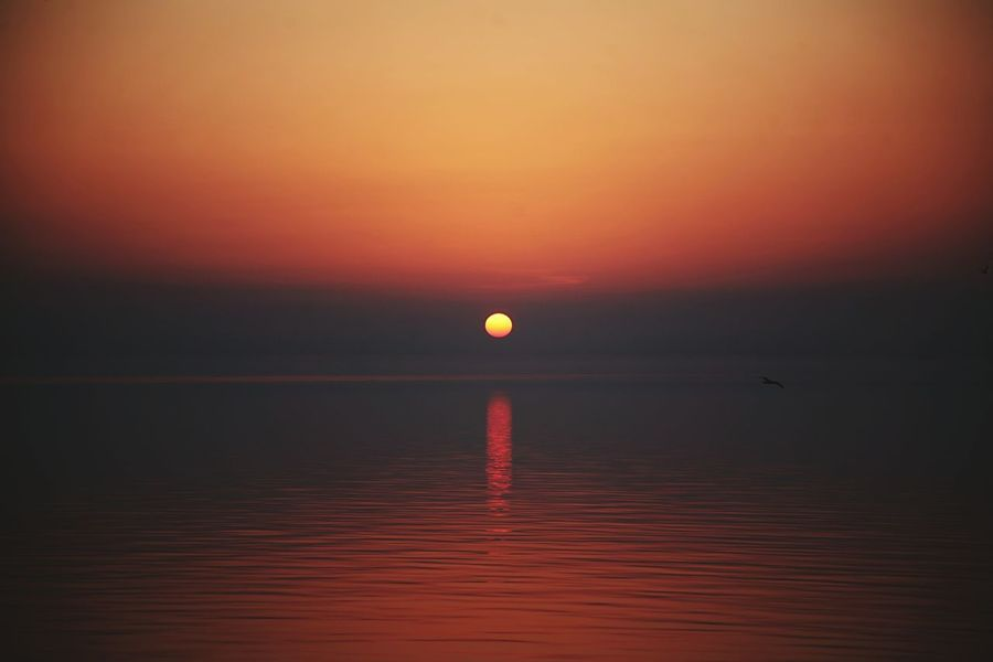 Sunset Sunset Horizon Sea Tranquility Reflection Scenics Sky Atmospheric Mood Water Beauty In Nature Horizon Over Water Distant Nature Outdoors Dramatic Sky Tranquil Scene Landscape Beach No People Fog