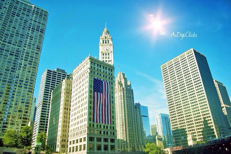 Chicago Chicago AsDigiClicks EyeEm Best Shots EyeEm Nature Lover