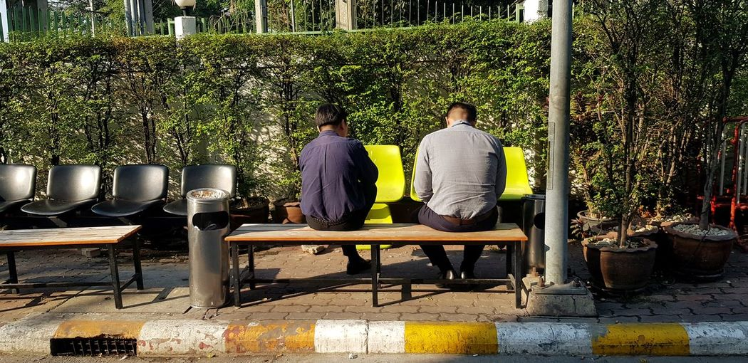Rear view of men sitting on bench