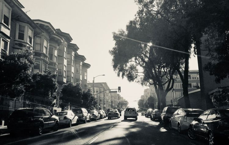 Black And White San Francisco Car Building Exterior Architecture Tree Street Road City Sky
