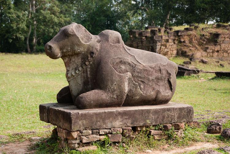 Close-up of lion statue