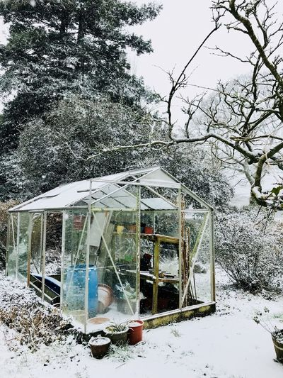 Winter greenhouse Garden Greenhouse Day Outdoors No People Built Structure Sky Tree Architecture Nature