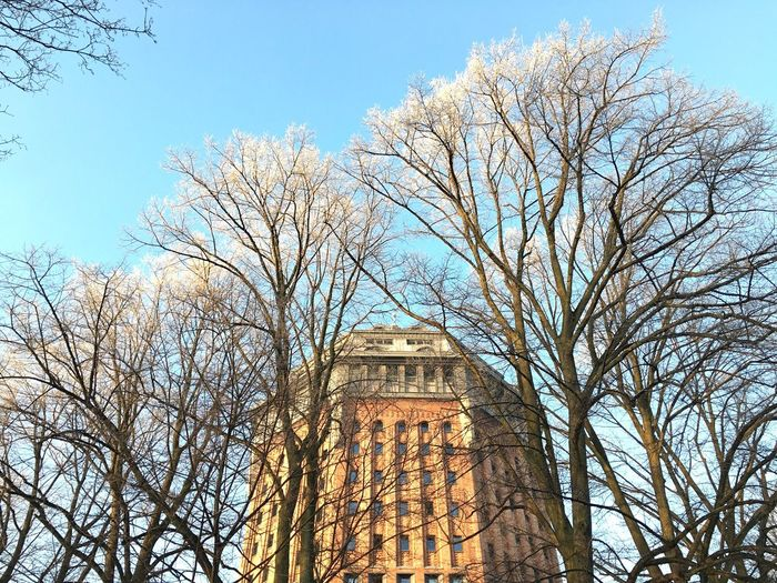 Good Morning Such a Beautiful Day today in Hamburg EyeEm Germany Nature Frost Frosty Trees Building Schanze Schanzenviertel Wasserturm Tower Bricks Blue Sky EyeEm Nature Lover