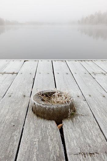 Frosty wooden