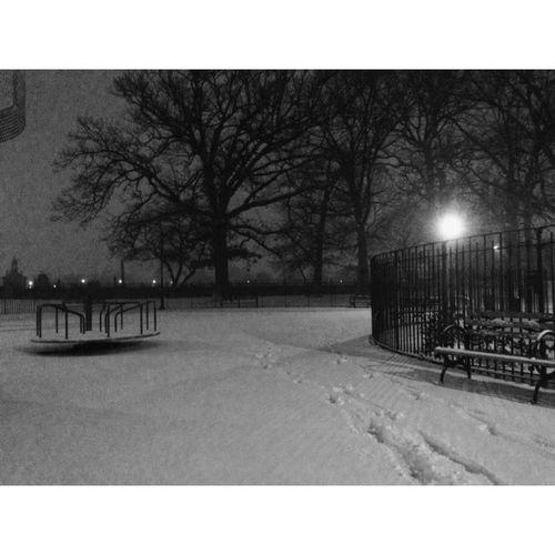 🚷Park closes at dusk... FriendsField Brooklyn NYC Park Merrygoround Snowday Solitude Noreaster Newyorkcity Cnnweather