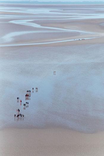 Tourists on sand beach near mont saint michel at low tide quicksand