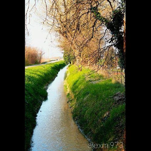 Bubano Bologna Spring Canal primavera Italy scatti_italiani Italianlandscape ita alexmi973