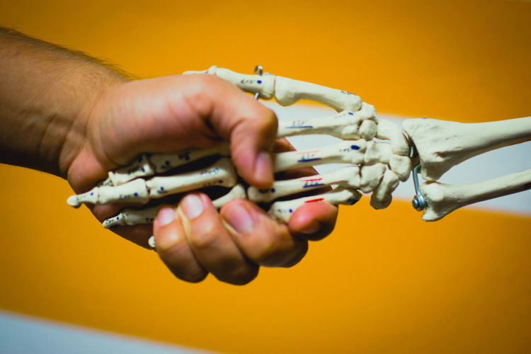Close-Up Of Hand Holding Skeleton Against Yellow Background