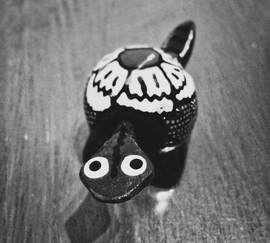 Animal Representation Close-up No People Turtle Wood - Material Wood Black And White Black And White Photography Black And White Collection  Bnw_collection Bnw Bnw Photography Indoor Photography Indoor Still Life Photography Animal Themes Wood Animal Semplicity One Animal Art Animalsmood Studio Shot Original Shape Simple Beauty