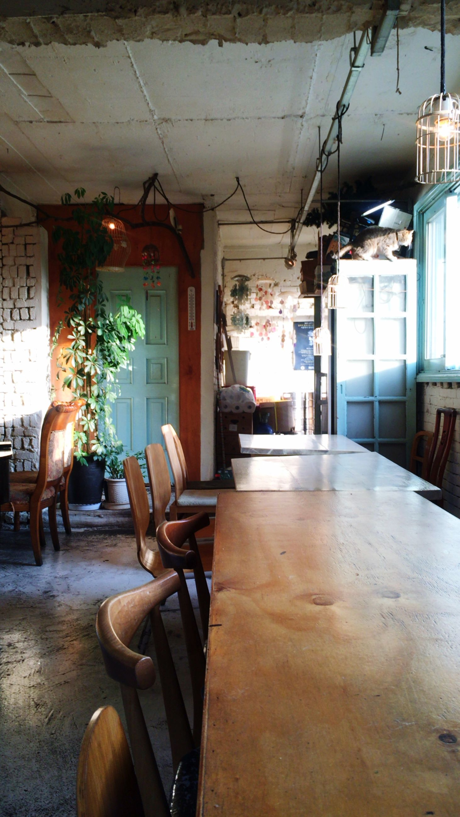 indoors, chair, table, absence, architecture, built structure, house, window, home interior, empty, furniture, domestic room, restaurant, interior, day, sunlight, flooring, no people, messy, room