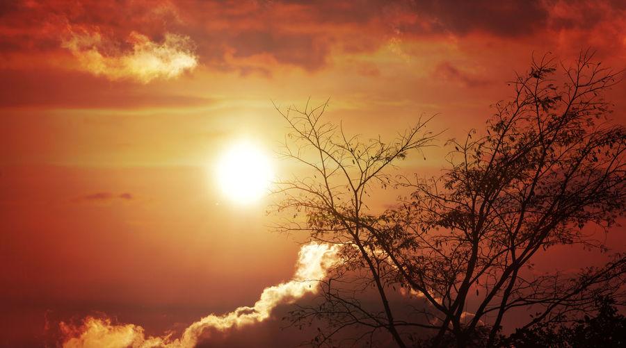 Radiant of Sun Radiant Evening EyeEm Best Shots EyeEmNewHere EyeEm Nature Lover EyeEm Selects EyeEm Best Shots - Nature Sunset Sun Silhouette Flying Bird Nature Outdoors Sky Sunlight Beauty In Nature Day Fashion Stories Capture Tomorrow