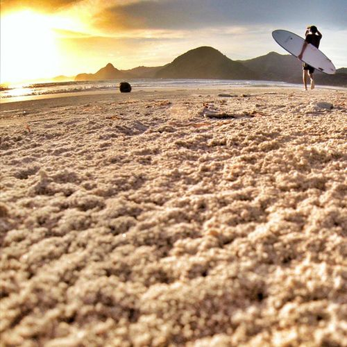 Morning Surise Surfing Session always wake me up! Lets surf guys! ☺✌🌊☝💓🌎👍👉🏄😍🌞🌞 sand surf sea sun surfboard sumbawa asia trip friends happy fun traveling travelgram instagood picoftheday teamriviera vsco love surfpics