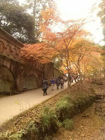 Autumn Colors 水路閣 南禅寺 Kyoto,japan Japan