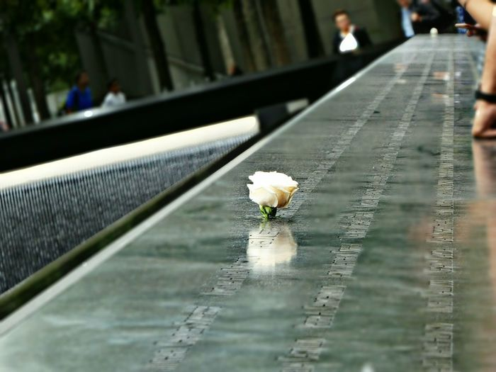 No words, only thoughts, only love .... Simple Quiet Love Ground Zero, NYC Rememberance Pool Flower White Rose Reflection Marble Stone Carved Names Water Flowing Water Always Flowing ALWAYS REMEMBER Always With Love A Special Feeling A Special Place