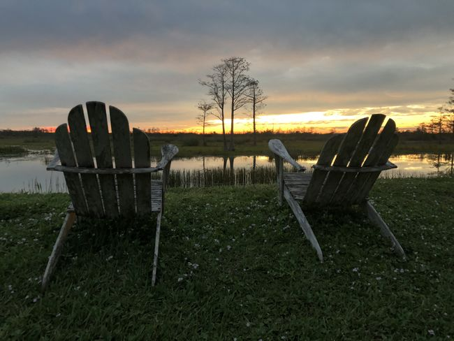 Adirondack Chairs Swamp Bare Tree Beauty In Nature Chair Cloud - Sky Day Grass Lake View Landscape Nature No People Outdoors Relax Retirement Scenics Sky Sunset Tranquil Scene Tranquility Tree