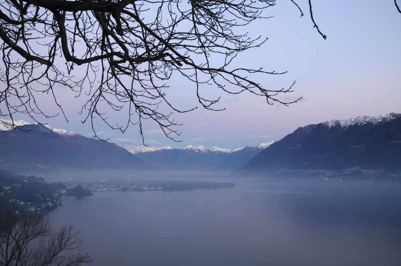 Alpine lake Maggiore with Mountain in Dusk in Ticino, Switzerland. High Up Snow-capped Beauty In Nature Branch Cold Temperature Dawn Dusk Idyllic Lake Lake Maggiore Landscape Mountain Mountain Range Nature No People Outdoors Romantic Sky Scenics Sky Swiss Alps Tranquil Scene Tranquility Water Winter