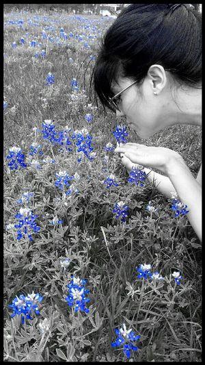 Bluebonnets!:-)