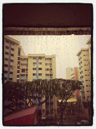 Last December Rain