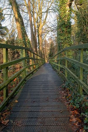Woodland footpath Converging Lines Trees Green Forest IPhoneography Trail Woodland Path Direction Tree Plant Diminishing Perspective Nature Connection Bridge Day No People Growth Railing Footpath Footbridge Tranquil Scene Beauty In Nature Outdoors