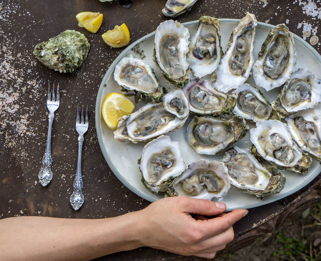 Cropped hand holding plate of oysters