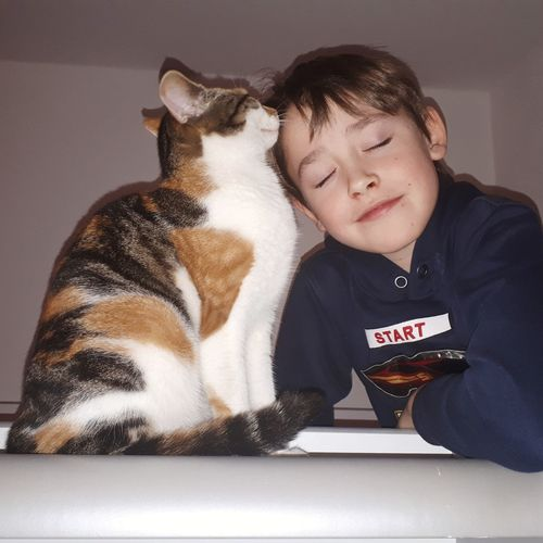 Smiling cute boy sitting by cat at home
