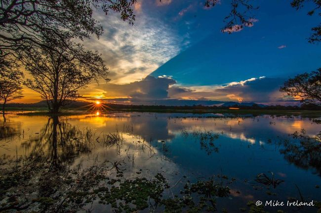Habanara, Sri Lanka sunset Reflection Water Sunset Nature Sky Sun Cloud - Sky Lake Landscape Tree Wetland Outdoors No People Beauty In Nature Sri Lanka EyeEmNewHere EyeEm Best Shots