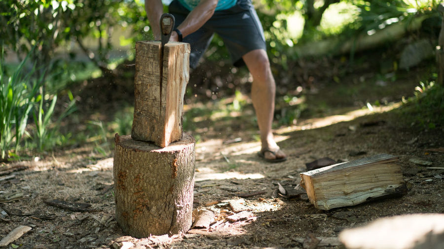 Low section of man standing on log