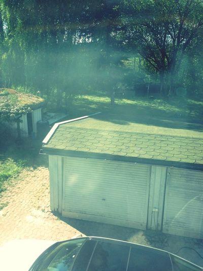 Backyard Garden Garage Foggy Morning