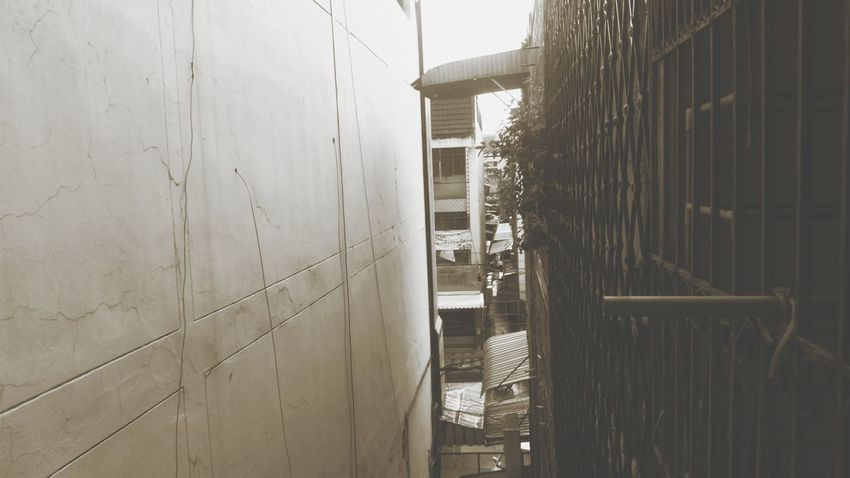 Row House Row House Fire Alley Architecture Building Building Exterior Built Structure City Concrete Day Direction Footpath Narrow Nature No People Outdoors Pattern Plant Row House Rooftops Row Houses Sunlight The Way Forward Wall Wall - Building Feature Wood - Material