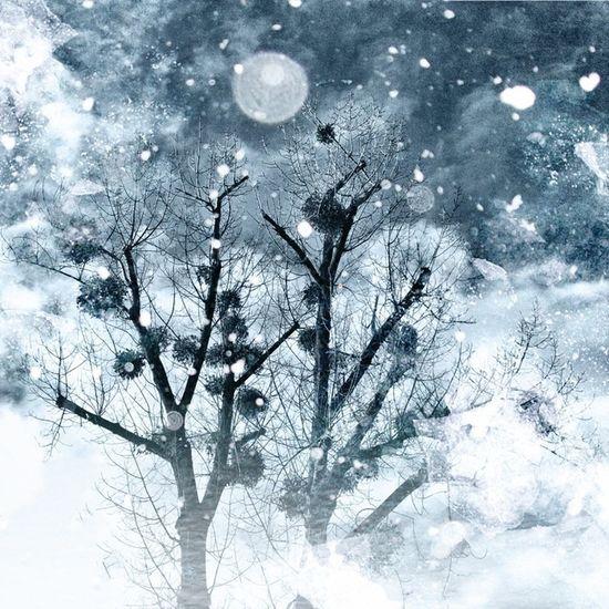 Digital winter Digital Winter