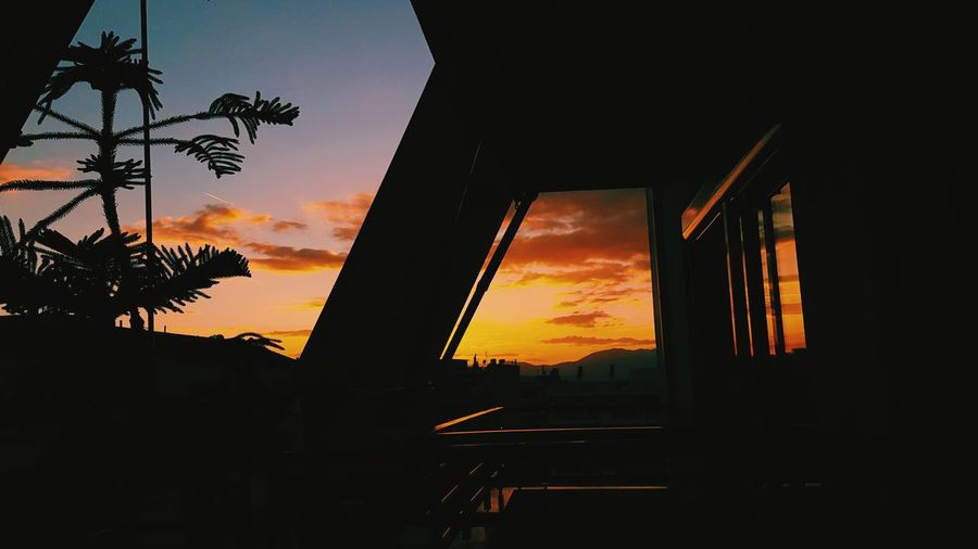 Home Sweet home.. Silhouette No People Built Structure Architecture Sky Tree Sunset Vacations Fine Art Photography EyeEm Best Shots Multi Colored Canon 5d Mark Iv Long Goodbye Cloud - Sky Welcome To Black Dramatic Sky Clear Sky Live For The Story Sommergefühle Lost In The Landscape