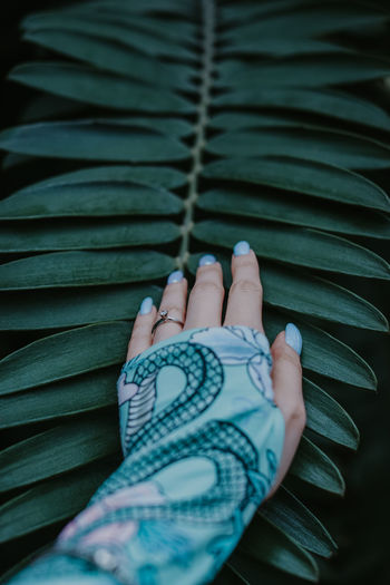 Female hand touching exotic branch of tropical green palm