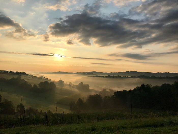 Sonne morgen Riegersburg Nebel Sun Fog Morning Wolken Clouds mystisch mystic Sunset Beauty In Nature Scenics Landscape Sky Field No People Tree Day Outdoors Cloud - Sky Riegersburg Austria Styria Beauty In Nature
