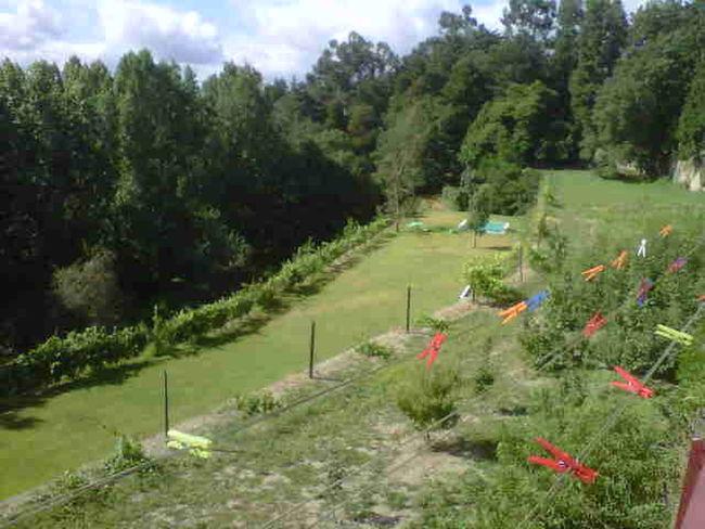 Of My Favorite Things View 25 Days Of Summer Italy La belleza the la naturaleza no tiene nombre es linda y natural lod
