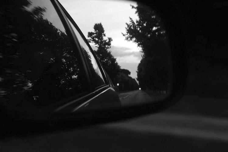 Twilight My