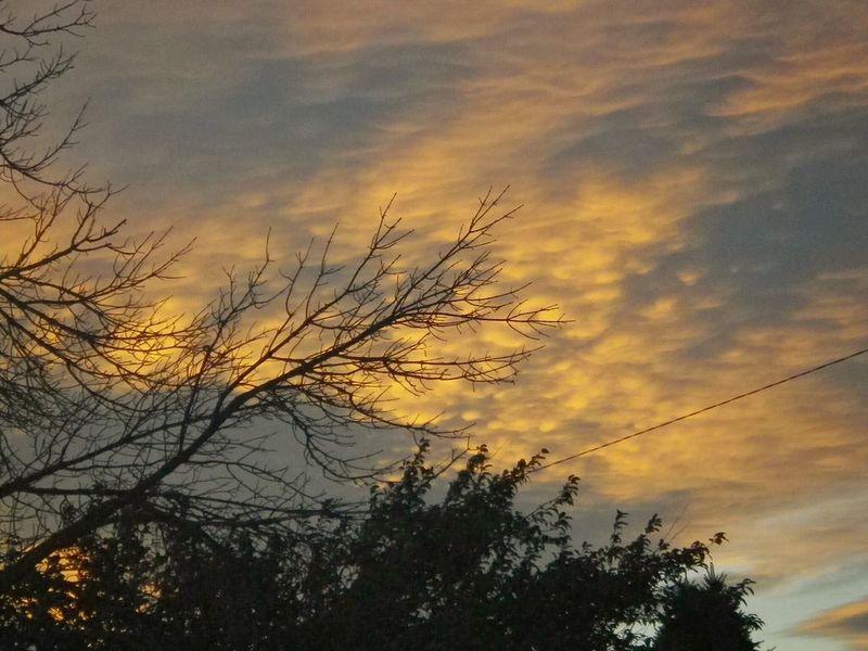 More Awesome Montana Skies Sunset #sun #clouds #skylovers #sky #nature #beautifulinnature #naturalbeauty #photography #landscape Sunrise_sunsets_aroundworld Subtlelight Backyard Shots