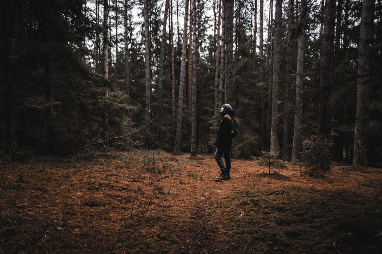 Man standing amidst trees in forest